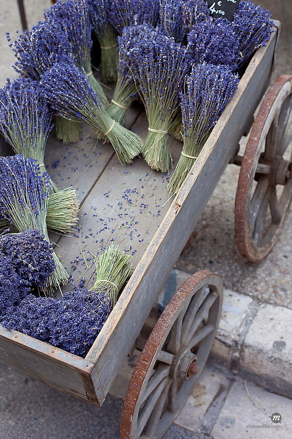 Overhead View of Bunches of Lavender, Provence, France © Susan Findlay / Masterfile