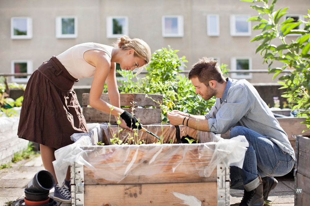 Young Caucasian Couple Gardening at Urban Garden © Masterfile Royalty-Free