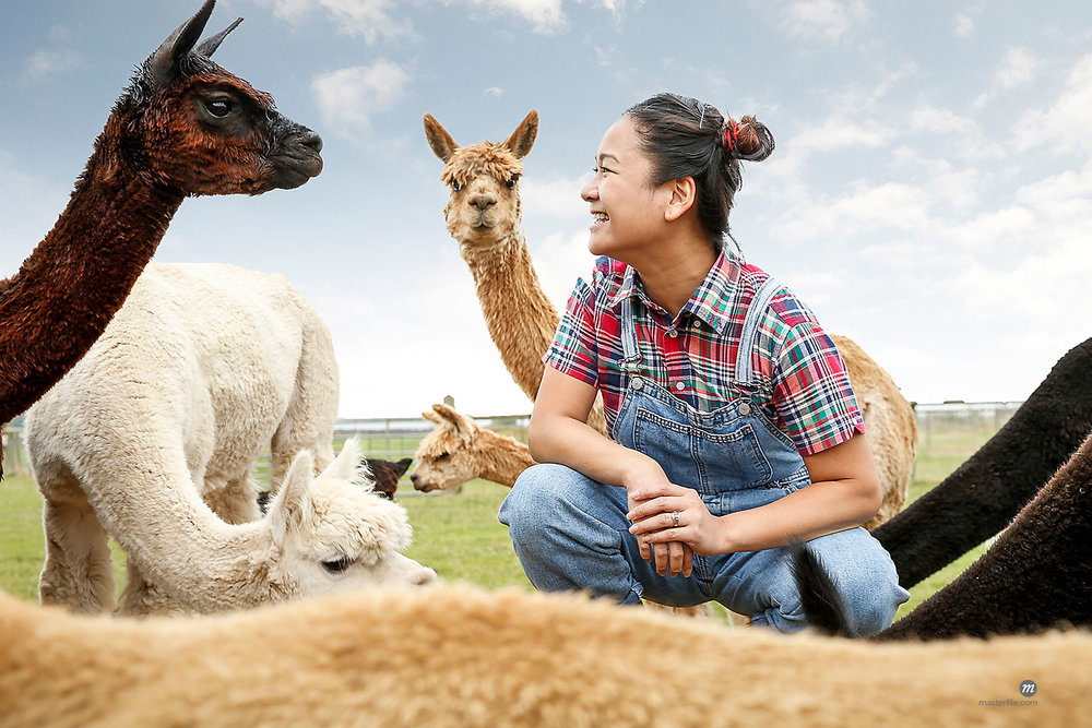 Woman sitting with alpacas, face to face, smiling © Masterfile