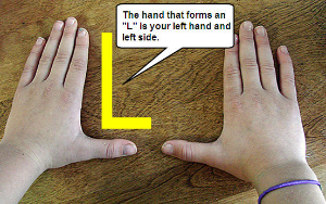 hand-forms-l4.jpg