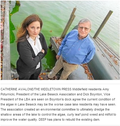 Concern over algae blooms