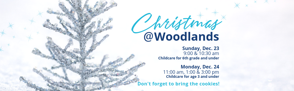 Copy of Christmas at Woodlands-6.png
