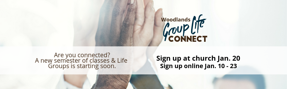 Copy of GroupLife.png