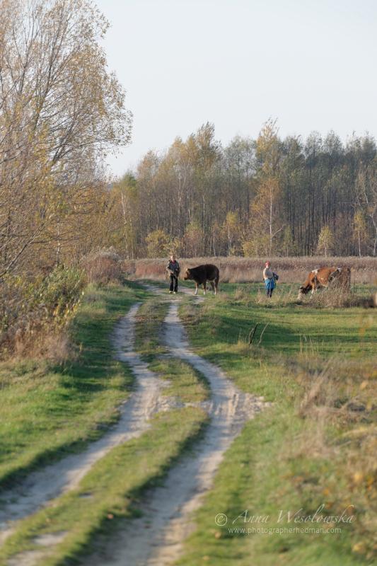 AnnaWesolowska_Polska2013_0280.jpg