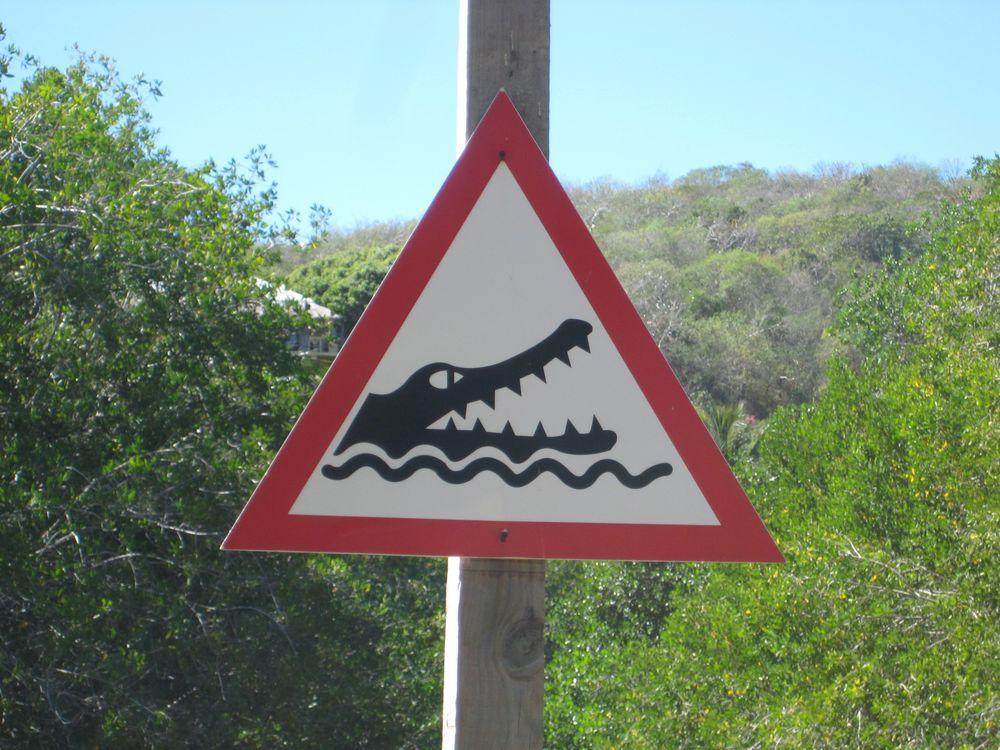 Playa Boca de Iguanas