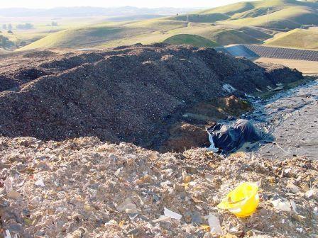 vasco_landfill.jpg