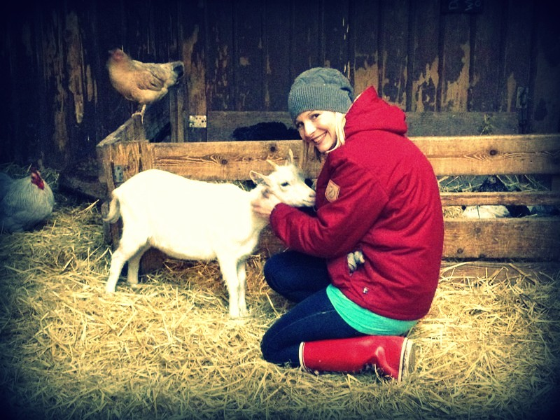 Amsterdam has a    biodynamic goat farm  where animals roam free during the days and local organic/ biodynamic vegetables are grown. Children (and adults) are welcome to feed & play with the animals - reconnecting urbanites to the food cycle.