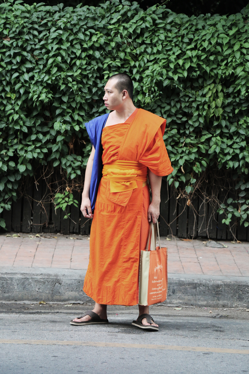 Buddhist Monk. Image courtesy John O'Callaghan.