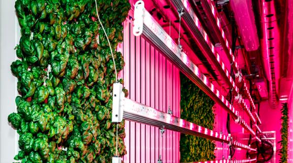 Modular Farms CO. website
