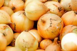 onions_265.1.jpg