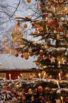 outdoor-christmas-tree-ornaments-snow
