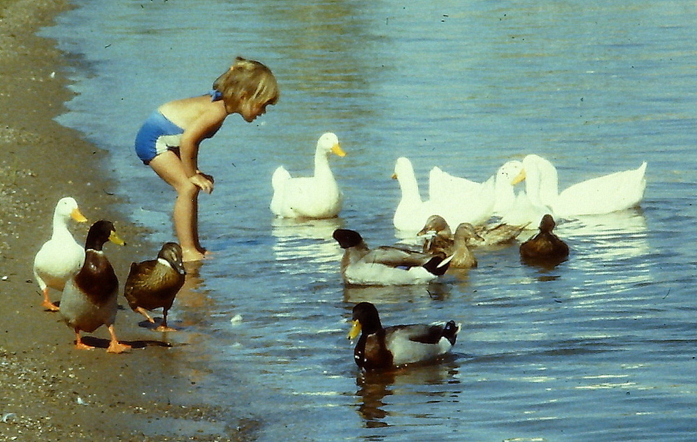 April at the Colorado River. 1981