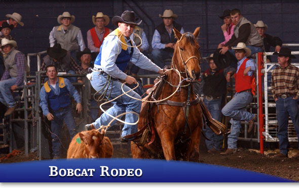 Click  HERE  for info on MSU rodeos.