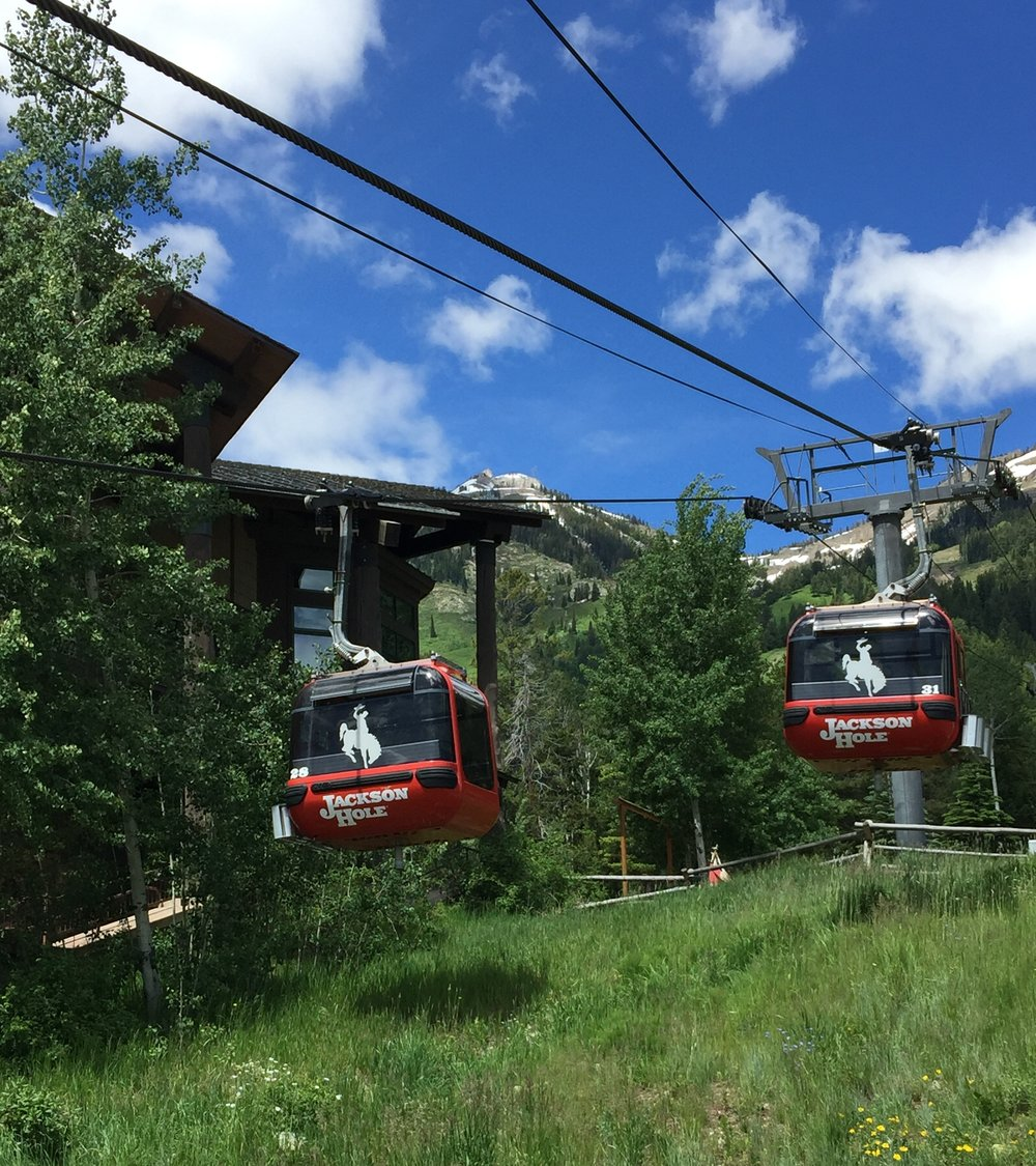 Gondola ride to top of Rendezvous Mt. - Jackson Hole Ski Area