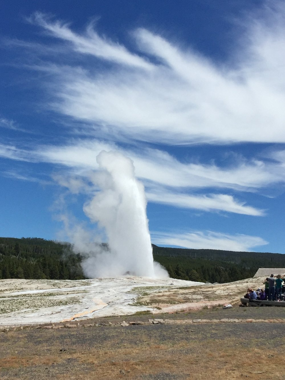 Old Faithful - YNP