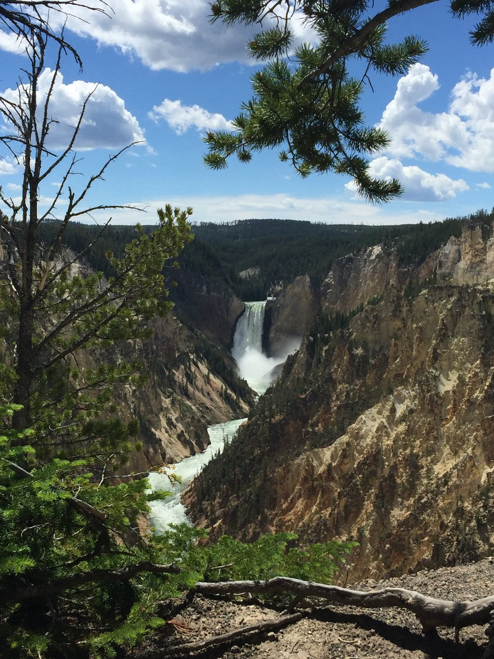Lower Yellowstone Falls from Artist's Point.  YNP