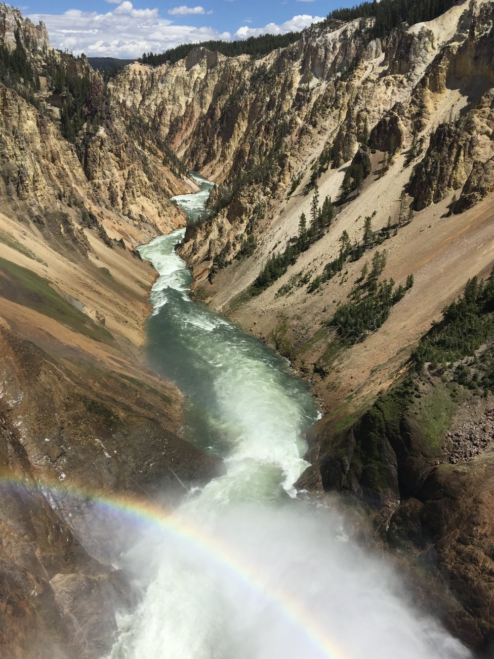 Grand Canyon of the Yellowstone (view from the falls).