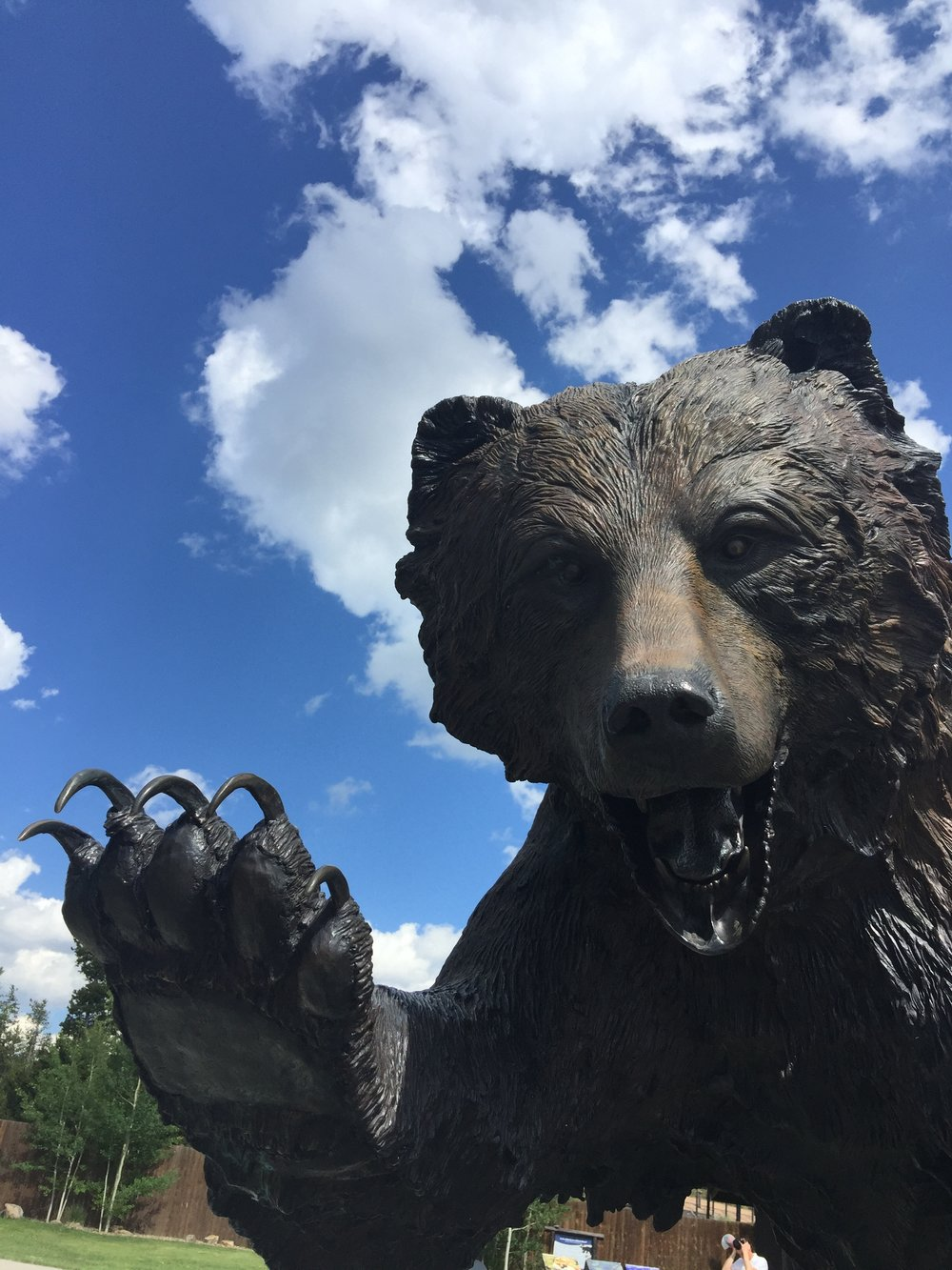 One of many beautiful life-sized animal sculptures in West Yellowstone.  This one's at the Grizzly and Wolf Discovery Center.