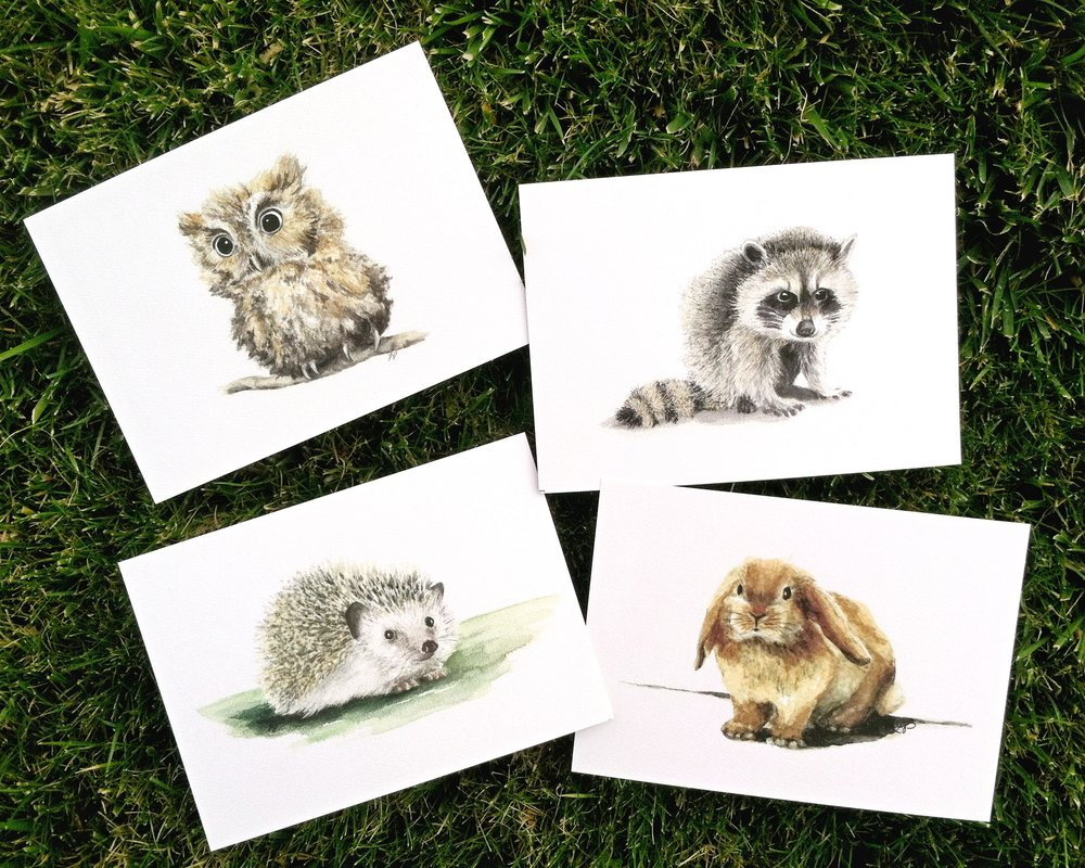 WOODLAND BABIES - Owl, Raccoon, Hedgehog, and Bunny    -  SIZE: 5 X 7