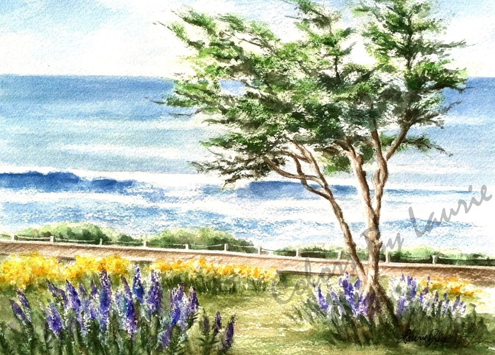 CAMBRIA BOARDWALK - Moonstone Beach Drive - SIZE: 5 X 7
