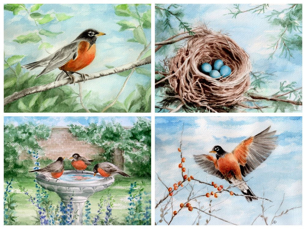 FOUR DIFFERENT ROBIN SCENES - SIZE 5 X 7    Robin Perching, Robin Eggs, Birdbath, Or Flying Robin