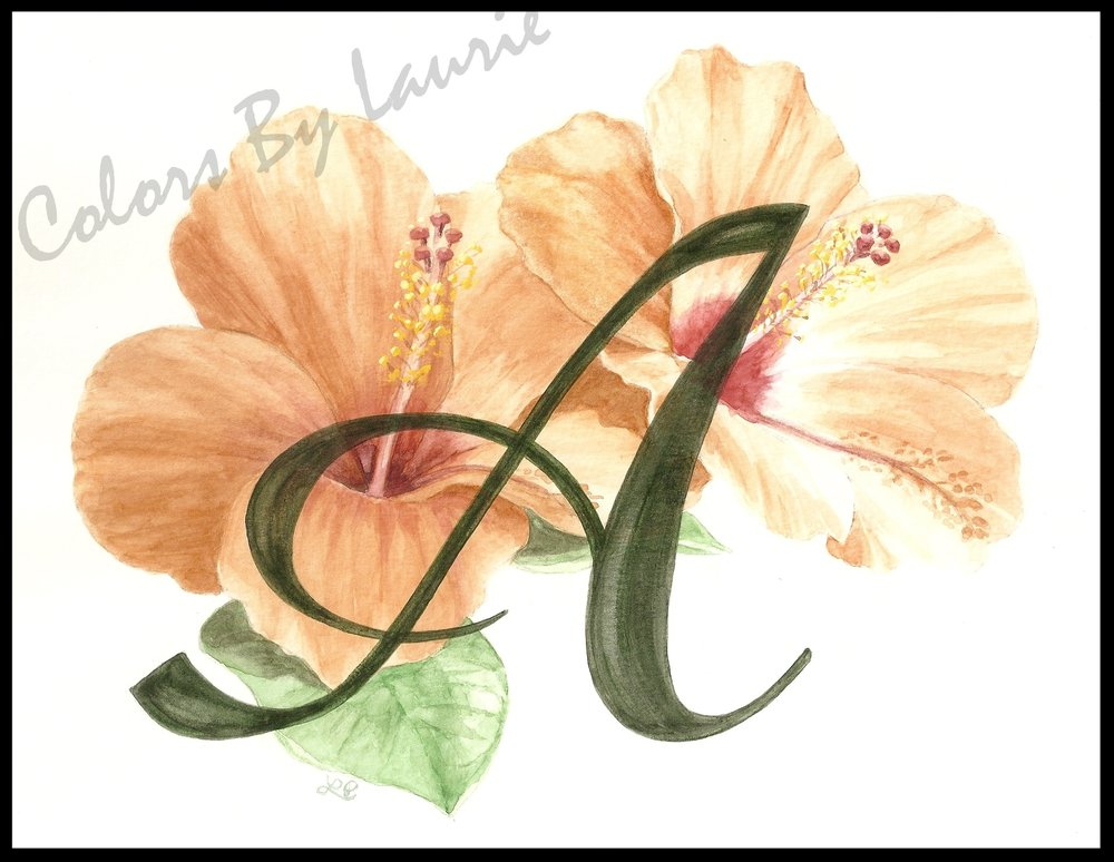 Hibiscus A0001q-001.jpg