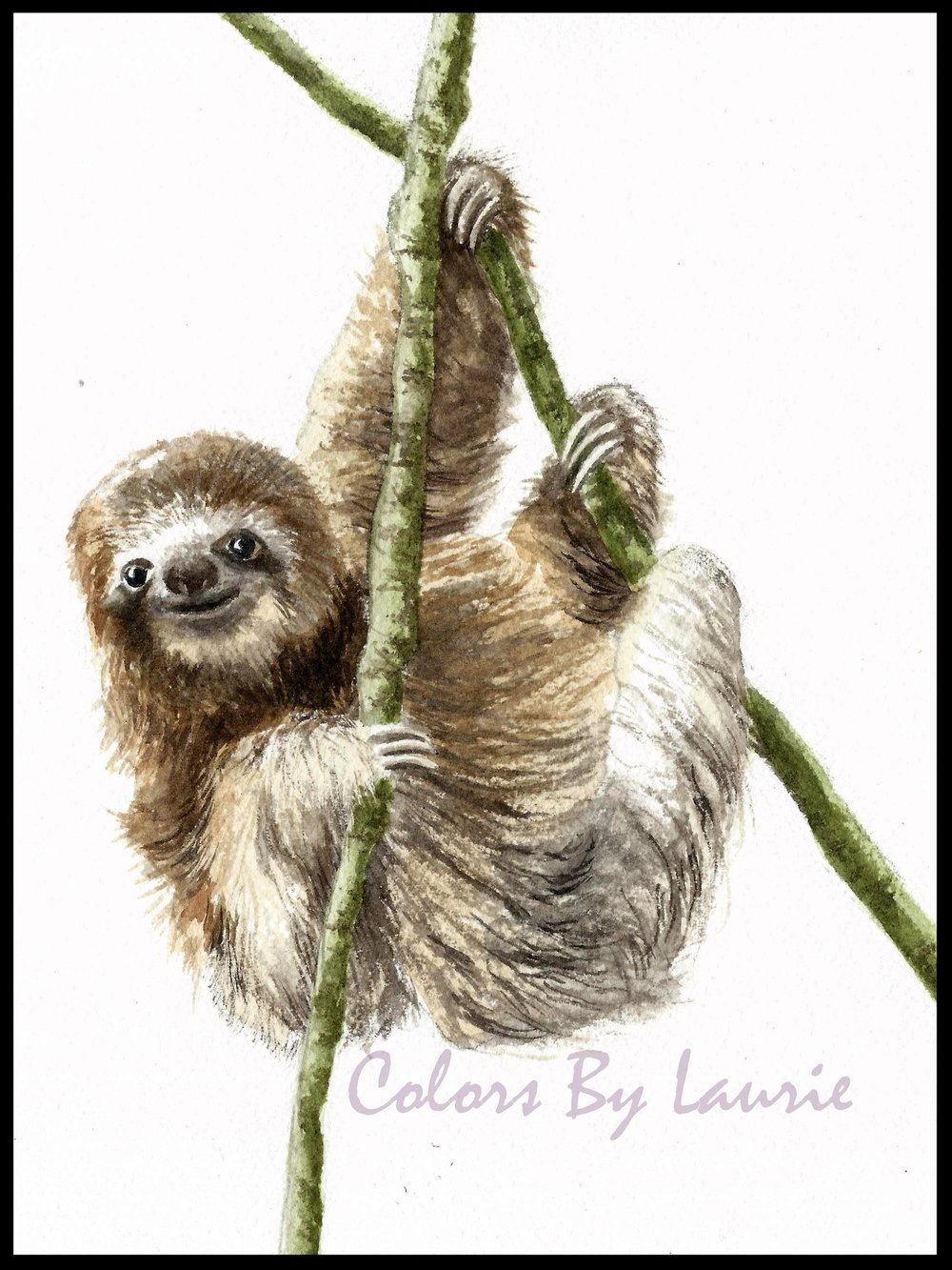 SLOTH HANGIN' OUT