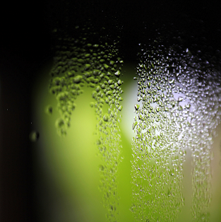 Condensation forming on a window may be an early indicator of damp.