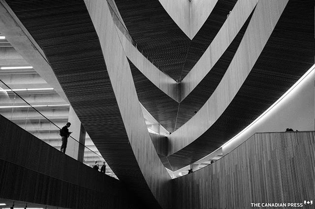 Visitors explore the new Calgary Library following its opening in Calgary, Alta., Thursday, Nov. 1, 2018. The four-storey building cost $245 million to construct and the 240,000-square-foot interior centres around a four-storey central atrium topped by a skylight. THE CANADIAN PRESS/Jeff McIntosh . . . . . #calgarylibrary #Calgary #Alberta #Canada #🇨🇦 #wood #naturallight #YCC #calgarypubliclibrary #Fuji #fuji #fujifeed #fujixseries #fujilove  #fujinon #fujifilmxseries #fujix #fujiframez #fujix100f #fujisan #fujixclub #fujicolor #fujifilmx100f #fujifilmph #fujifollowme #bnw #bnw_captures #vimptfreeprint #vimpt @vimpt