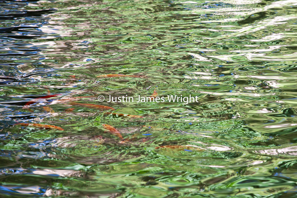 Urban Reflections. Justin James Wright. Philippine Fine Art Phot