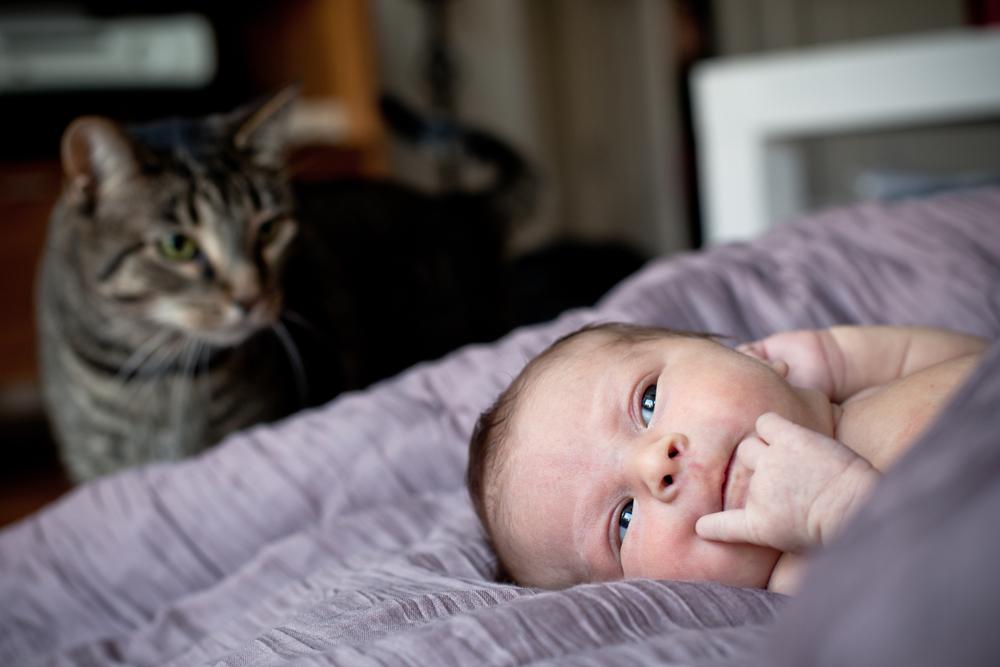 newborns-18.jpg
