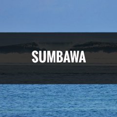 SUMBAWA.jpg