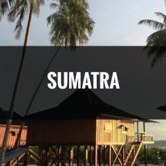 SUMATRA.jpg