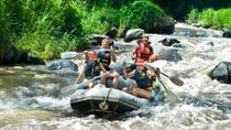 elephant-safari-park-and-white-water-rafting-adventure-in-bali-127979.jpg