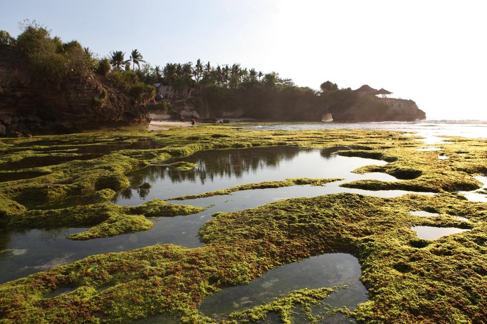 #3 Nusa Cenigan low tide 2.JPG