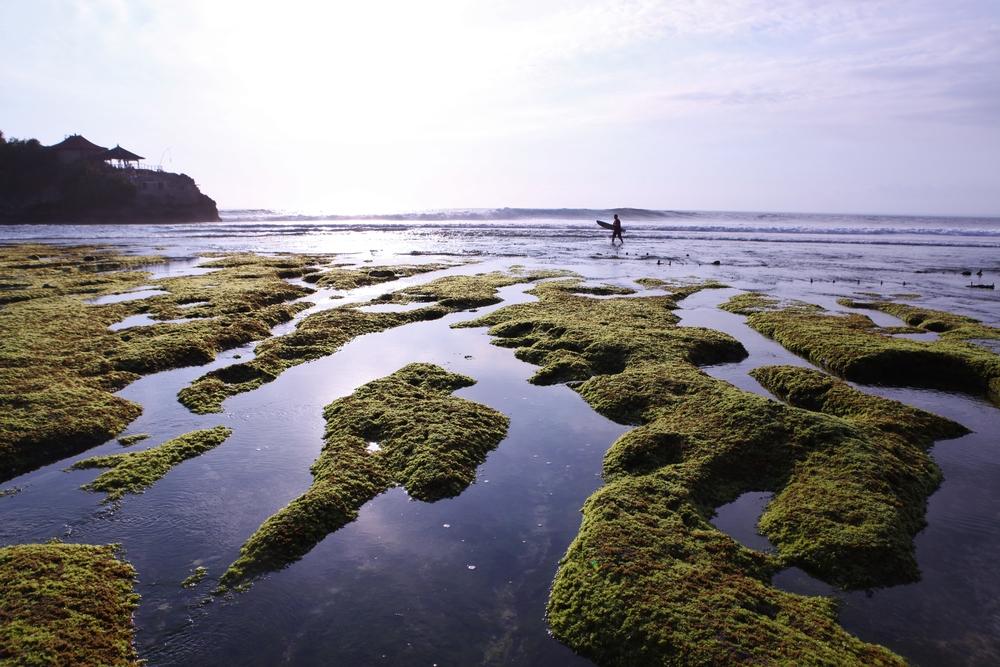 #3 Nusa Cenigan low tide.JPG
