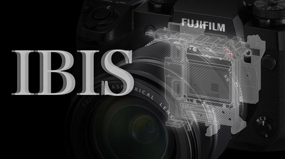 xh1_ibis_01.jpg