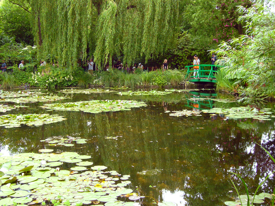 Claude Monet's pond