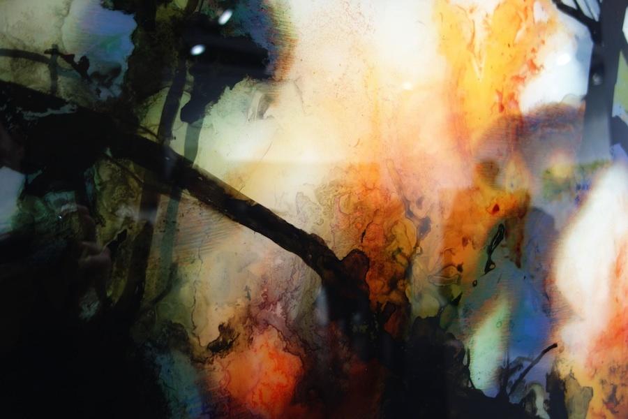 Carole Benzaken, Magnolias 2 (detail)