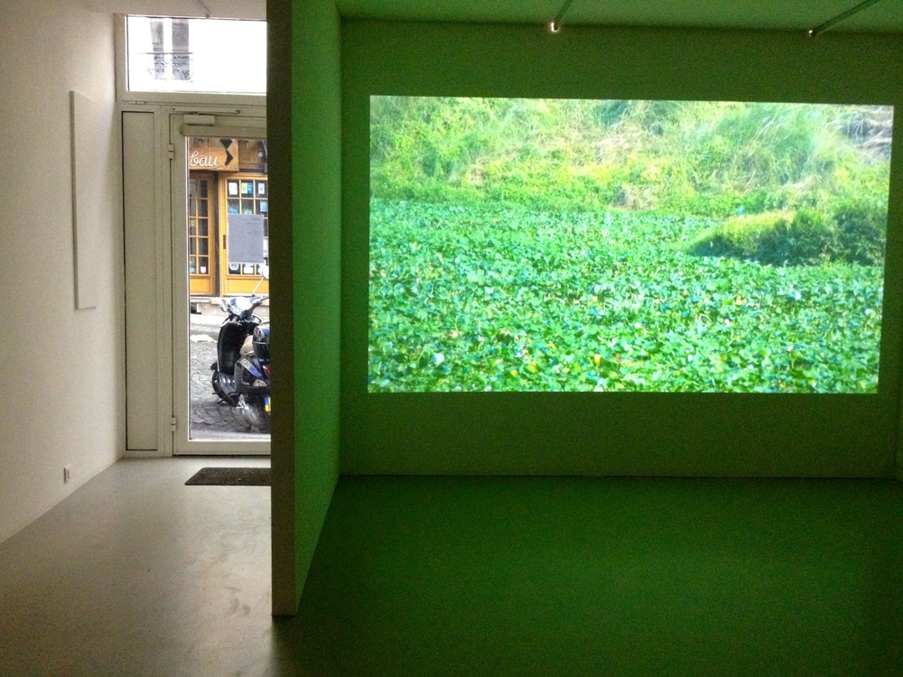 Zhou Tao at Kadist Foundation