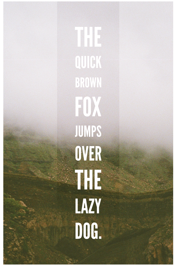 The Quick Brown Fox...