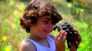 Lucas_happy_with_a_turtle_on_set_of_Magic_World_music_video_photo_by_Market_Street_Productions.jpg