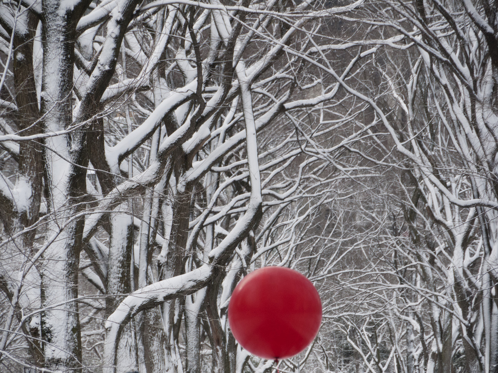 20130209_blizzard_0010.jpg
