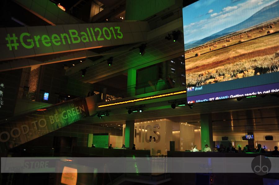 green-inaugural-ball-2013-3256.JPG
