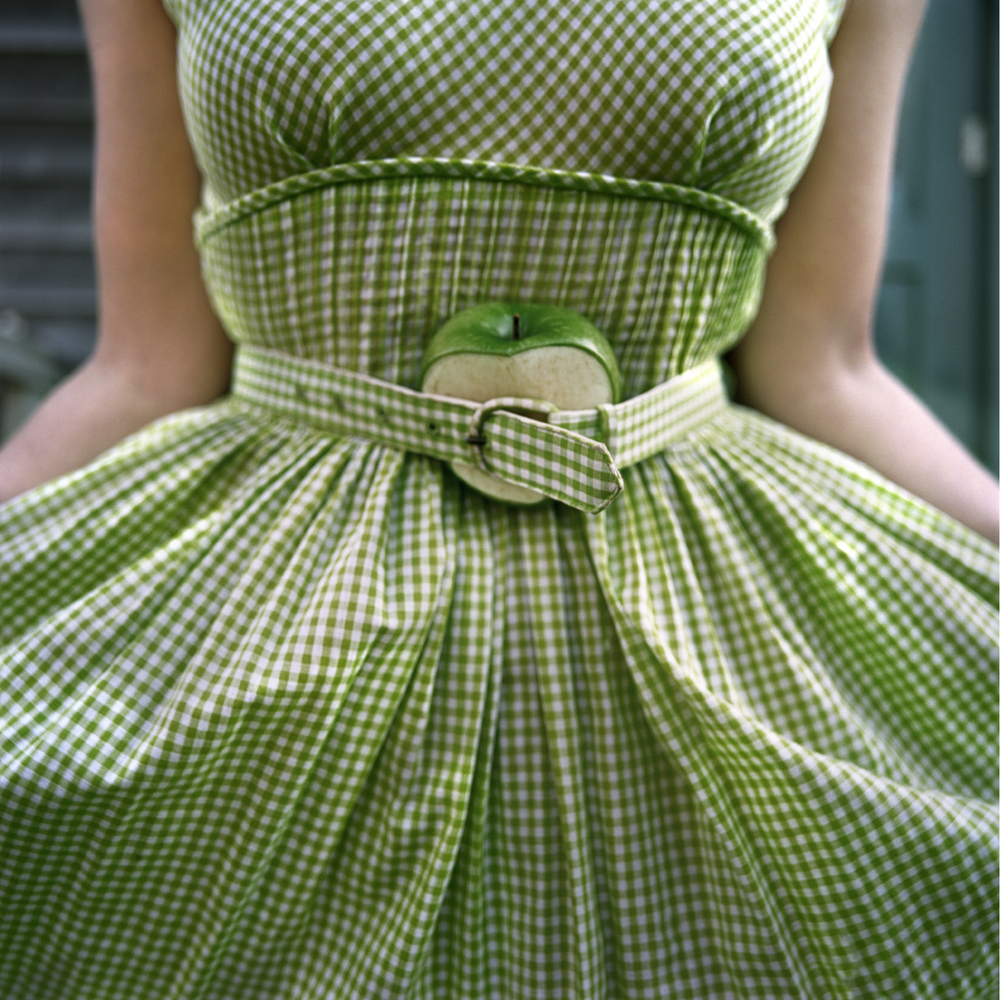 The Cut Apple and Gingham Dress, Self Portrait, Clark's Island, Maine, 2003