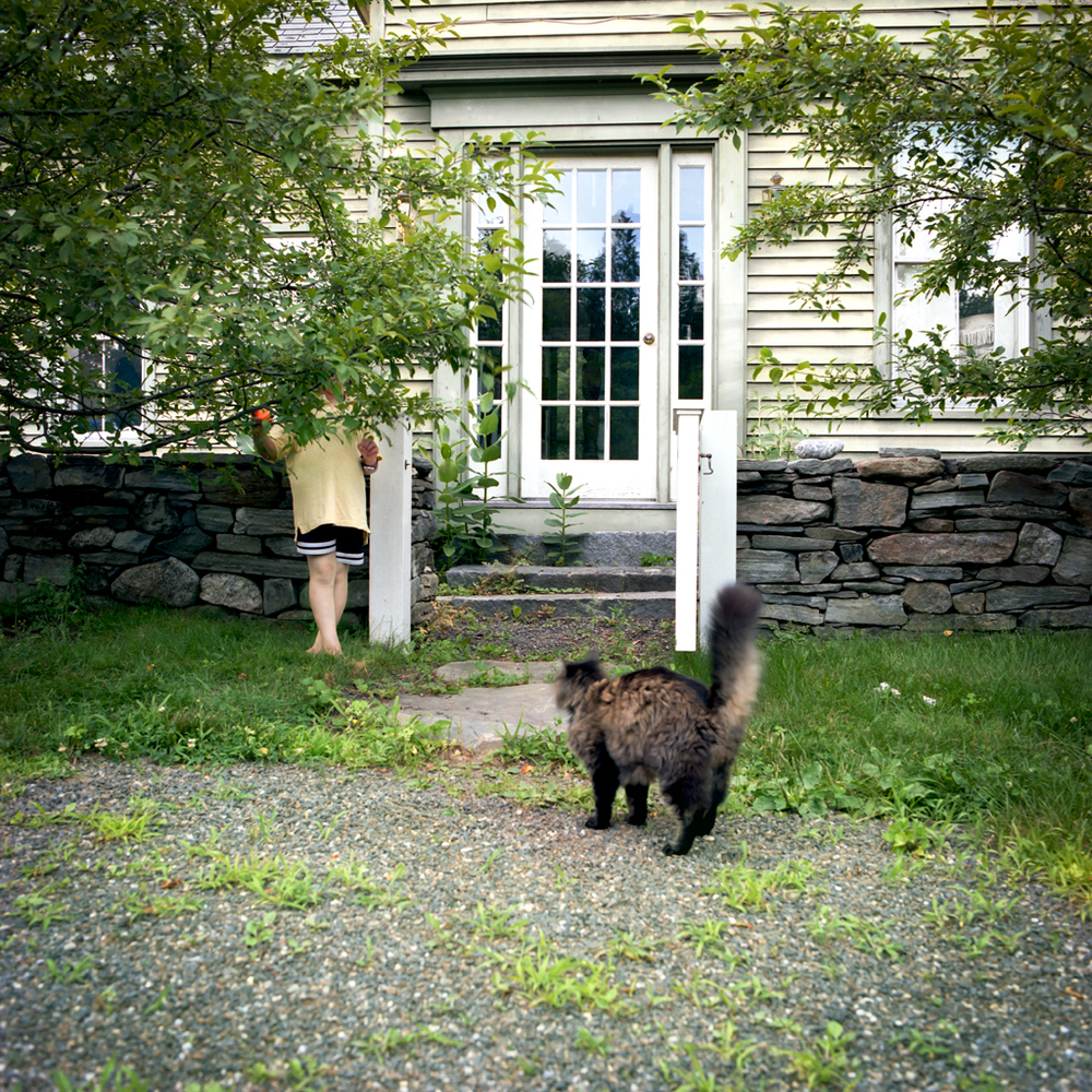 Cito and Dixie Cat, Cushing, Maine, 2007