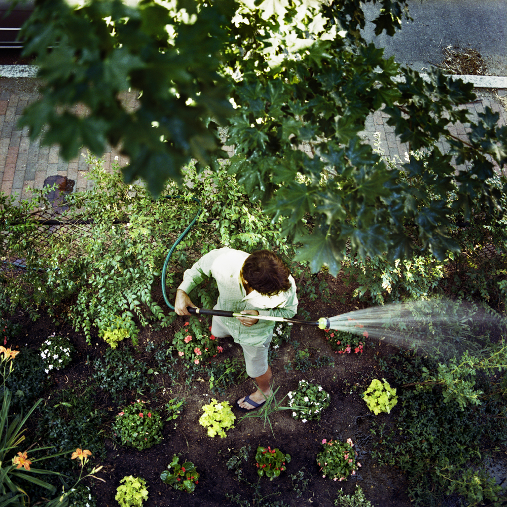 The New Garden, Doug, Cambridge, Massachusetts, 2007