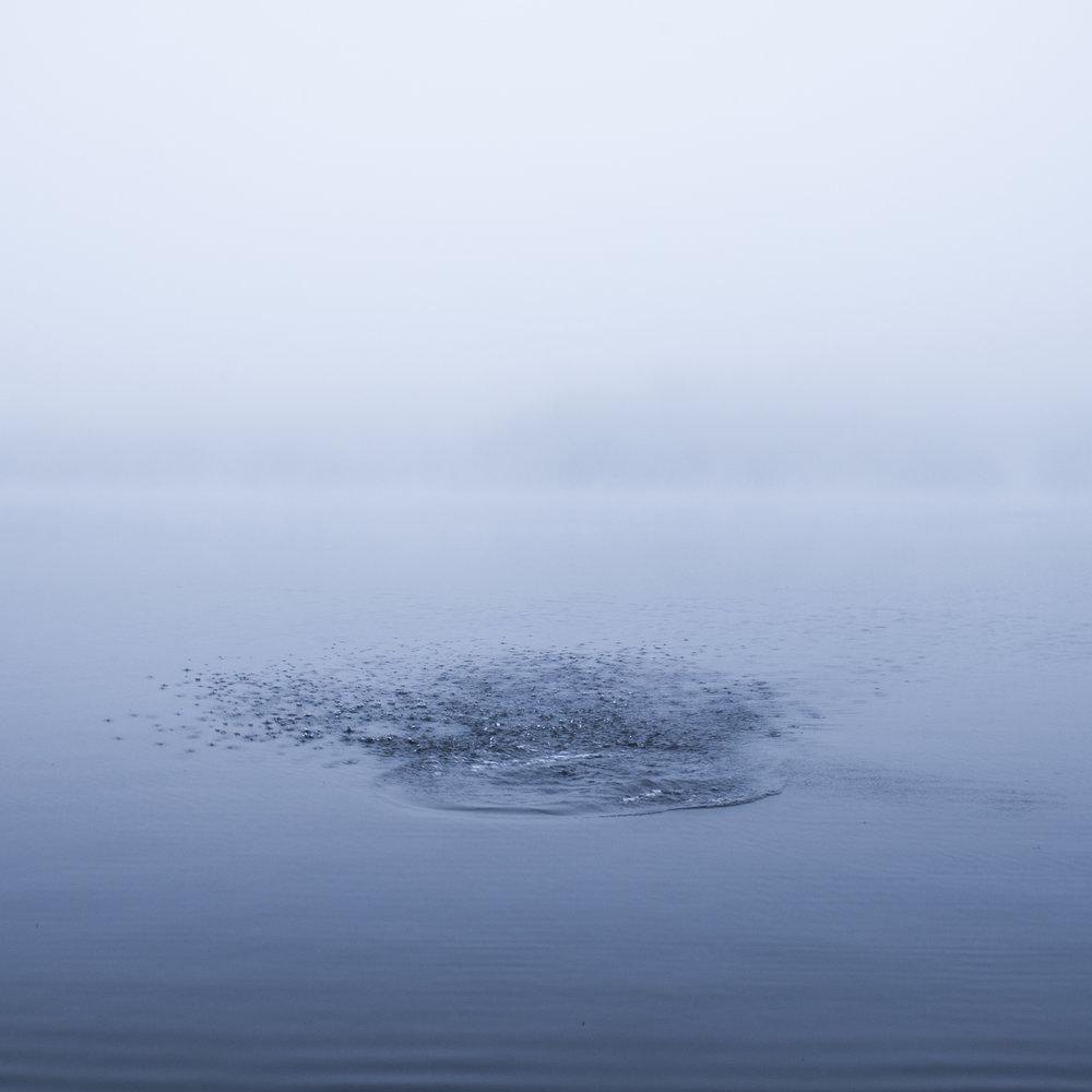 Lake Megunticook, 2016