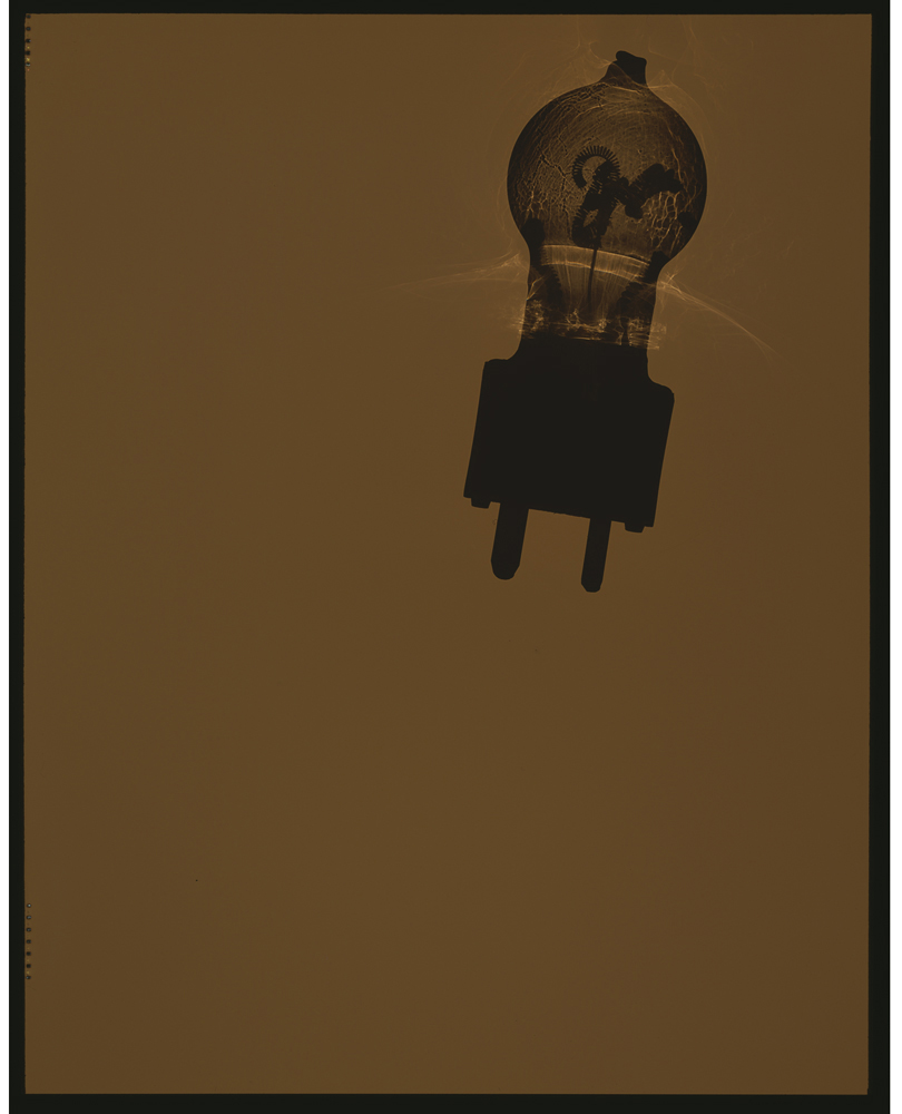 07_bulb0013.jpg