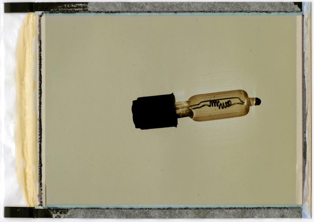 bulbs004V2.jpg